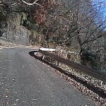 不動峠への上り坂