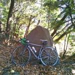 三ツ石森林公園で自転車
