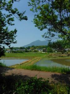筑波山麓2014年6月
